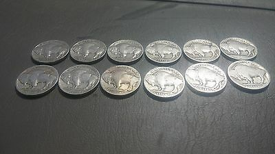 Buffalo Nickels - No Date / Partial Date - Lot Of 12