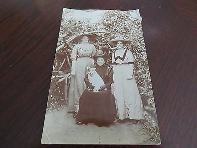 Vintage Postcard Victorian Or Edwardian Ladies Hair Dress Style Fashion Dog