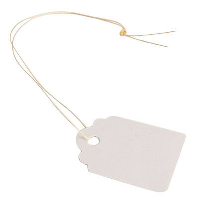 100pcs Waterproof Strip Line Gardening Labels Signs Plant Hanging Tags White FK