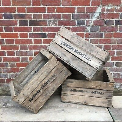 Industrial Vintage French Wooden Apple storage Crates