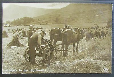 Old Farming Scene Real Photo Postcard - Highlands Scotland circa 1924 ??