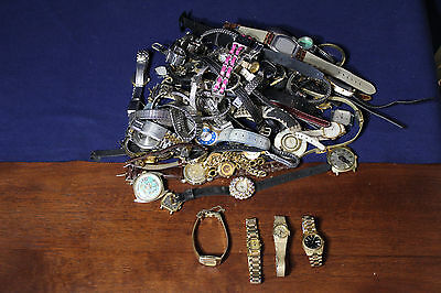 Large Group Watches Watch Parts Timex 4 Lady Seiko's All for Parts Group 3lbs
