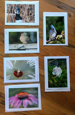 Beautiful Photocard Birds and Flowers - Set of 6