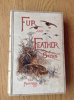 """Fur And Feather Series """"the Partridge"""" 1894"""