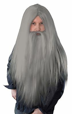 Adult Grey Wizard Wig Beard Straight Long Gandalf Dumbledore Merlin Fancy Dress