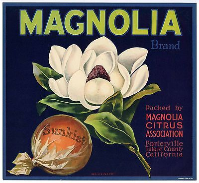 MAGNOLIA Porterville Crate Label, *AN ORIGINAL 1930's ORANGE LABEL* wear 786