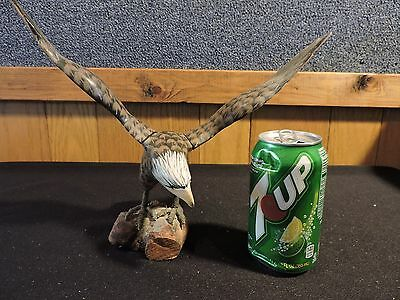 Vintage Hand Carved And Painted Eagle (#588)