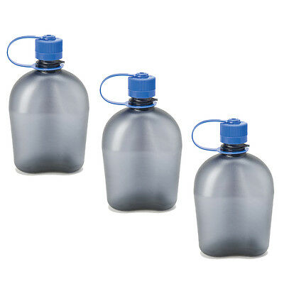 Nalgene Oasis 1qt Canteen Bottle Gray - 3 Pack