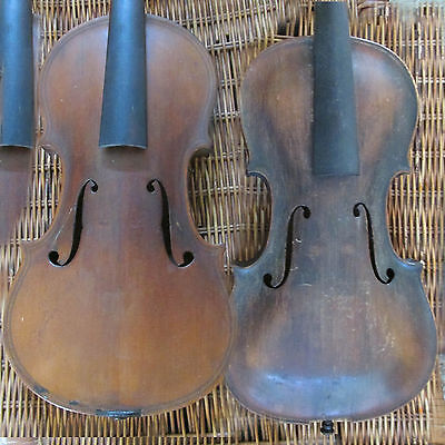 Antique Stainer and Maggini full size violins