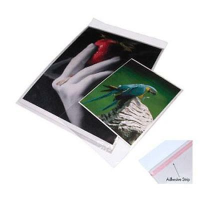 "Print File Crystal Clear Art Protectors, 19x25"", 100 Pack #0631925"