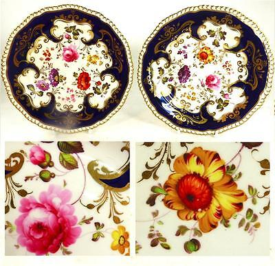 PAIR ANTIQUE ENGLISH REGENCY PORCELAIN PLATES FLOWERS BLUE GILT BORDER pat 4468