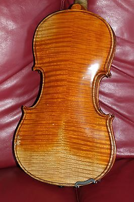 A fine old violin -stunning back