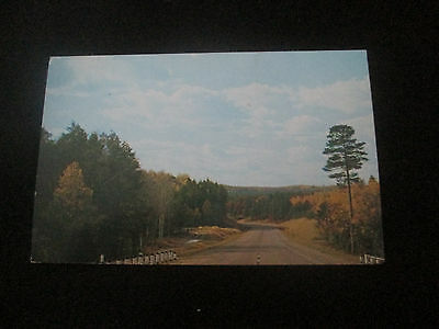Scenic Highway    Michigan  Postcard