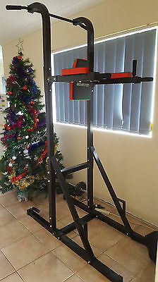 Power Tower Multi Use Fitness Station Chin Ups Dips Push Ups