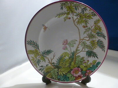 Original Hand Painted 1864 Diamond Dated Aesthetic Movement Plate. 23.5Cms Dia;