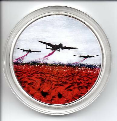 The Jacqueline Hurley War Poppy Collection