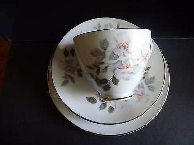 CUP, SAUCER, PLATE TRIO - SILVER ROSE by ROYAL ADDERLEY - SILVER WEDDING GIFT