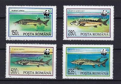 Fish Sturgeons of Romania 1994 WWF set MNH