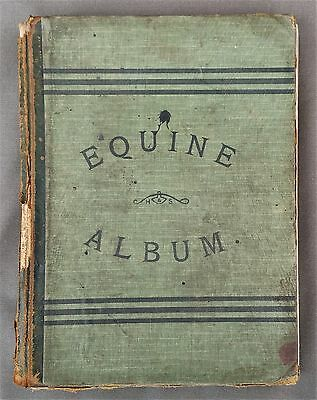 """""""Equine Album"""" by Hampson & Scott, Walsall owned by R. D. Pickering, Saddler"""