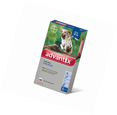 Advantix Grand Chien 25 à 40 kg- 6 pipettes antiparasitaires 4 ml