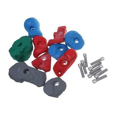 10Pcs/Set Climbing Hand Holds Screw On Holds Bolt On & Hardware Accessories