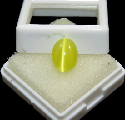 Oval Shape Certified Amazing 100% Natural 5.20 Ct Honey Color Cat's Eye Gems