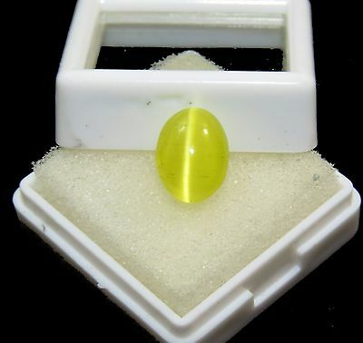 Beauty 100% Natural Oval Shape Certified Honey Color Cat's Eye Gems 5.30 Ct