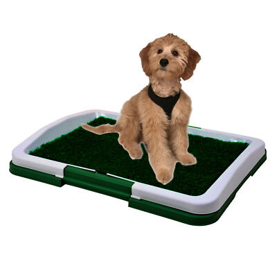 "Dog Puppy Indoor Potty Pad Rug Training Grass Patch Toilet Mat Tray 18""x13.5"""