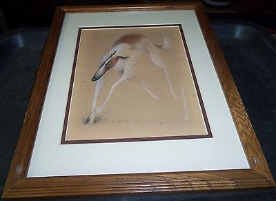 Borzoi Russian Wolfhound Funny Whimsical Art Signed by Felix D'Obrin Framed