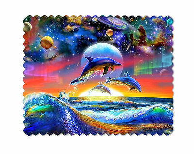 Dolphins Lens Sunglasses  Eye Glasses Cleaning Cloth