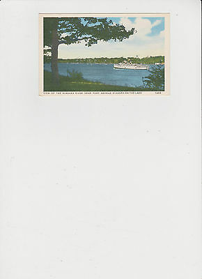 View of Niagara River with SteamBoat  Vintage Post Card