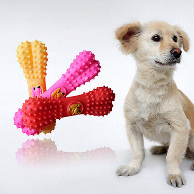 Lovely Pet Dog Puppy Cat Bone Chews Toy Squeaker Squeaky Sound Play Toys Fun LM