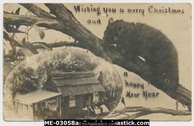 Christmas Postcard with Old Bark Hut and Possum and Gum Leaves