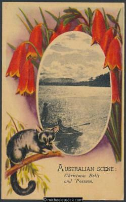 Australia Scene, with Christmas Bells & Possum (2)