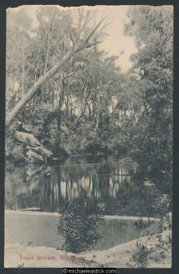 Mittagong - the Trout Stream