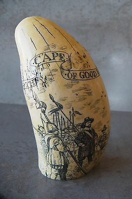Replica Whale Tooth Scrimshaw -The Cape of Good Hope- 4.75""