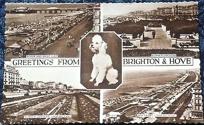 Greetings From Brighton & Hove Multiview - Wardell Real Photographic Postcard