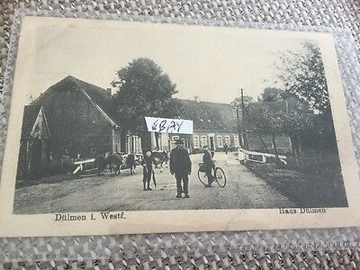 Vintage Card Dulmen Haus Westphalia Germany Oxen Cycles Children Etc