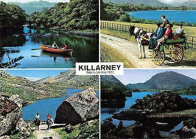 B100843 killarney chariot horse riding   ireland