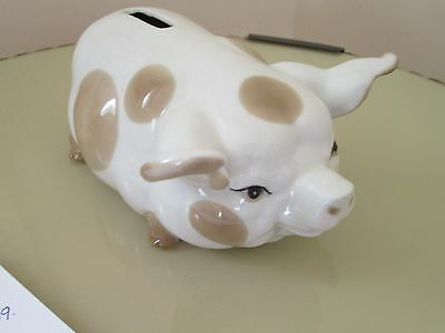 szieler spotted pig money box
