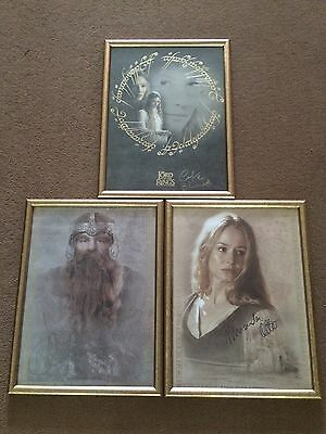 Lord Of The Rings Signature Edition Signed Framed Posters