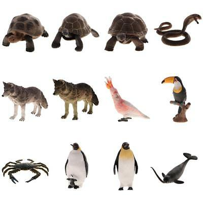 New Realistic Wild & Nature Animal Model Figures Children Toy Gift Collectibles