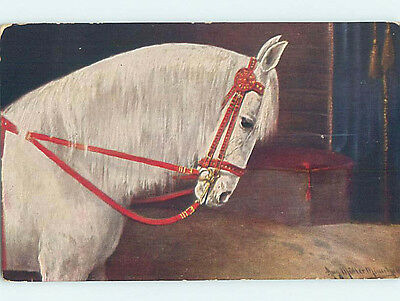 Pre-Linen signed LARGE DETAILED BEAUTIFUL WHITE HORSE HJ4801
