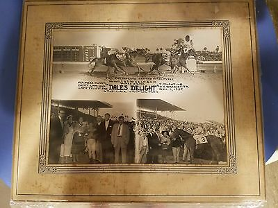 """DERBY Horse Racing Photo Collage TROPICAL PARK 12-9-1957 """"DALE'S DELIGHT"""" FL"""