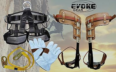 Tree Climbing Spike Set Pole Spurs Climber Pro Harness Climbing Glove Evoke Gear