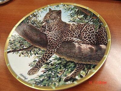 """8 1/4"""" Lenox Guy Coheleach Afternoon Shade Royal Cats Plate Collection Decor"""