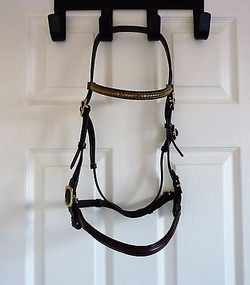 Havana leather cob size in hand bridle with clincher browband