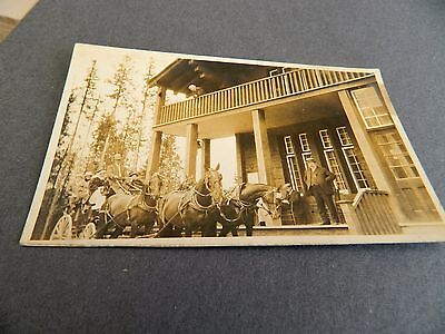 early real photo postcard of coach & horses