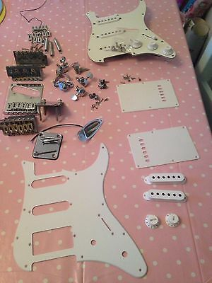 Joblot Of Stratocaster Parts Pickups Tremolo Ect (Project Guitar)