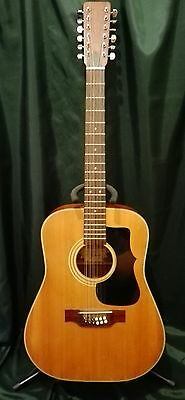 Guitare Vintage 12 Cordes Western Country Di Mauro